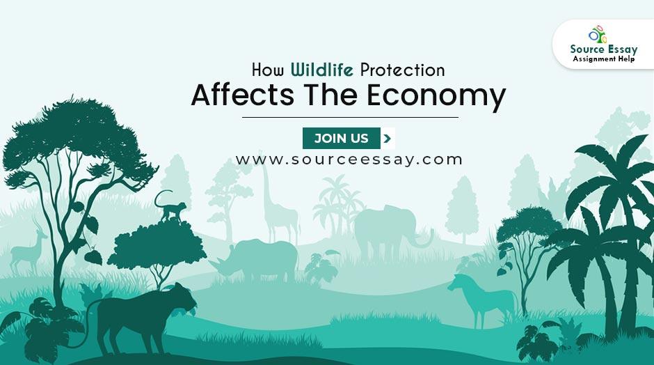 economics of wildlife protection